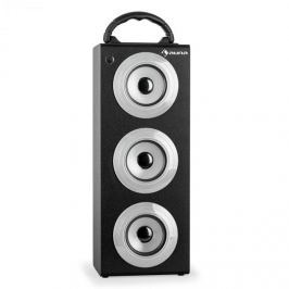 Auna Beachboy XXL Bluetooth hangfal, ezüst, USB, SD, AUX, FM