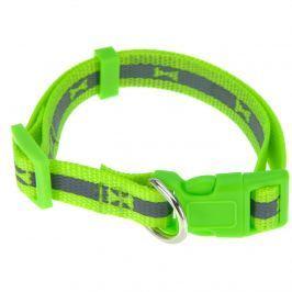 Neon zöld kutyanyakörv, S méret, S