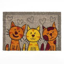 BO-MA Trading Macskák kókusz lábtörlő szürke, 40 x 60 cm