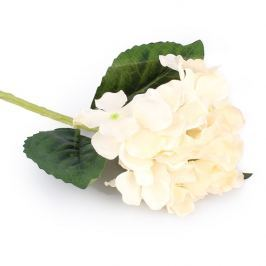 Művirág hortenzia fehér