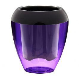 Plastia Calimera műanyag önöntöző virágtartó lila és fekete