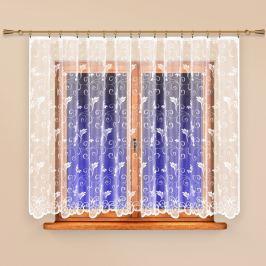 4Home Anita függöny, 300 x 250 cm, 300 x 250 cm