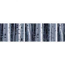 Nyírfa öntapadós bordűr tapéta, 500 x 14 cm
