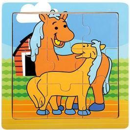 Koníci