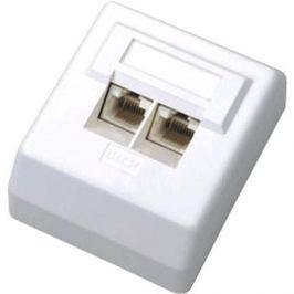 Datacom Datová zásuvka UTP CAT5E na omítku 2000